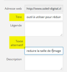 texte alternatif et title dans wordpress
